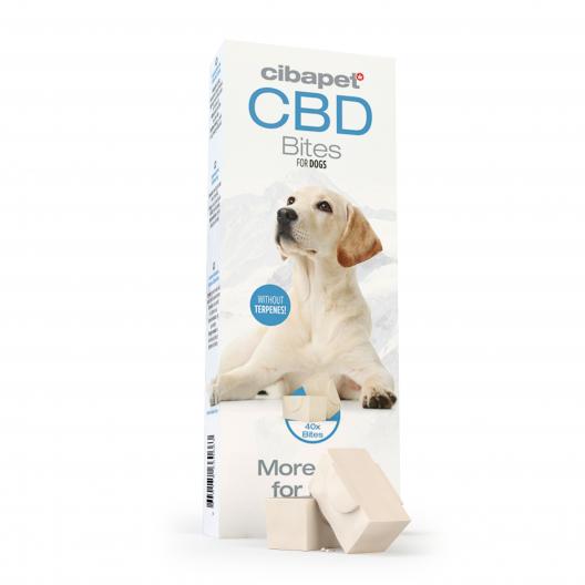 CBD snacks voor honden