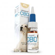 CBD Olie 4% Voor Honden