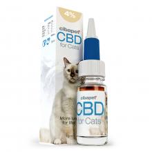 CBD Olie 4% Voor Katten