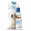 CBD Olie 2% Voor Honden